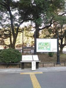 東京M 試走 17